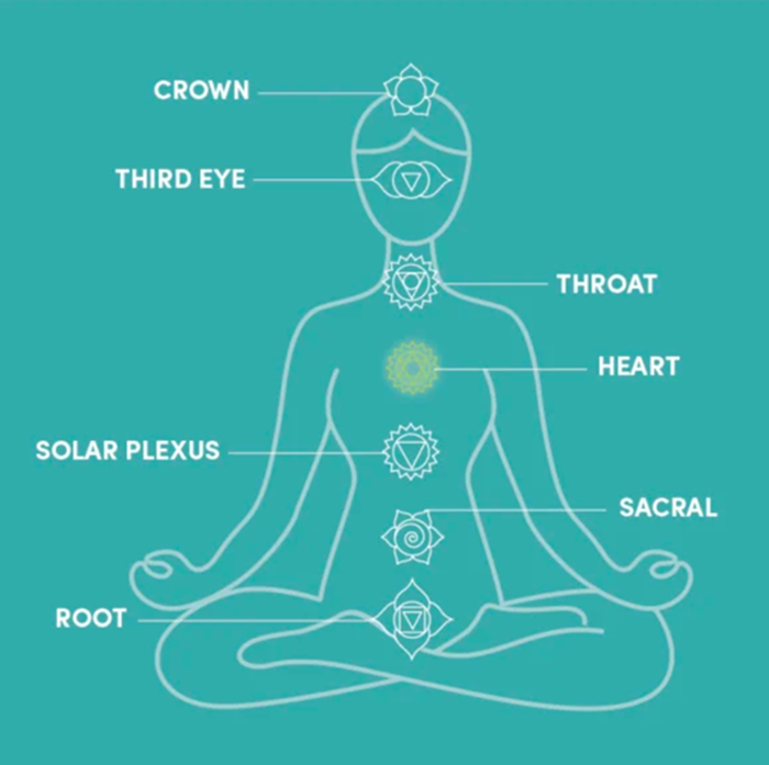 7 chakras of the body explained