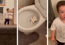 little boy puts toothpaste in the toilet lying requires a larger vocabulary